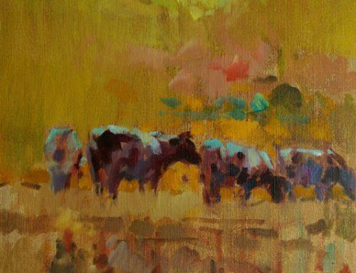 Koeien bij opgaande zon